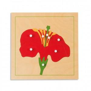 Puzzle flor, GM214BN00, material montessori, botánica, material escolar infantil.