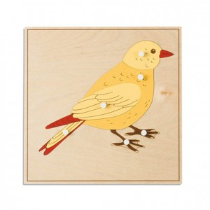Puzzle pájaro, GM2165N00, material montessori, biología, material escolar infantil.