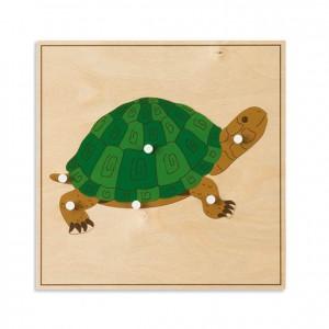 Puzzle tortuga, GM2164N00, material montessori, biología, material escolar infantil.