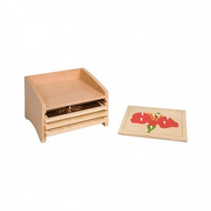 Gabinete para puzzle de botánica, GM2140N00, material montessori, botánica, material escolar infantil.
